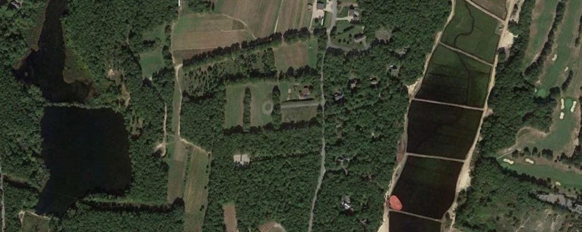 Tony Andrews Farm
